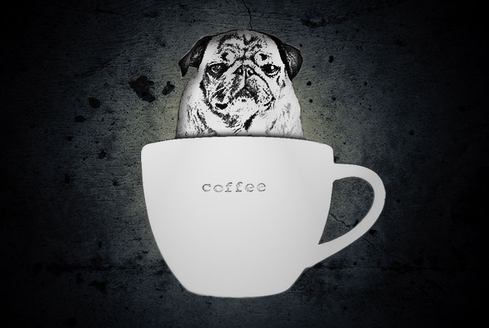 CoffeeDog, Just that!